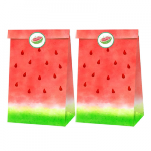 Watermelon Party Gift Bags
